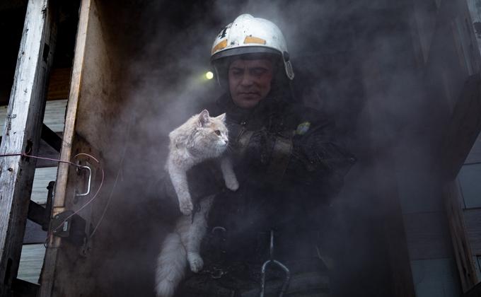 Фото пожарного, выносящего кота из огня, умилило новосибирцев