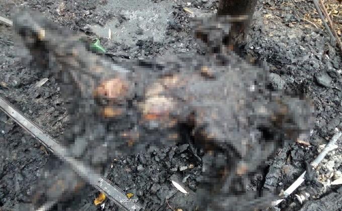 ВНовосибирске накостре изсгоревшего мусора обнаружили обгоревший труп женщины