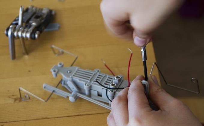 Роботов обучат звериным повадкам новосибирские ученые