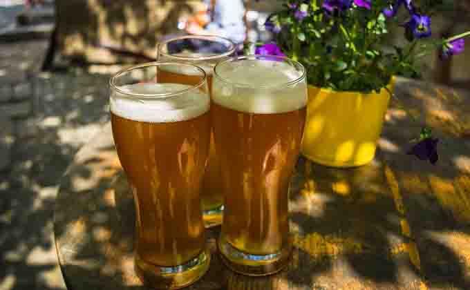 Качество пива в России изменится – солод заменят зерном