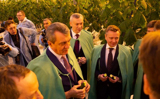 Новосибирская область на 100% закроет свои потребности по выращиванию овощей