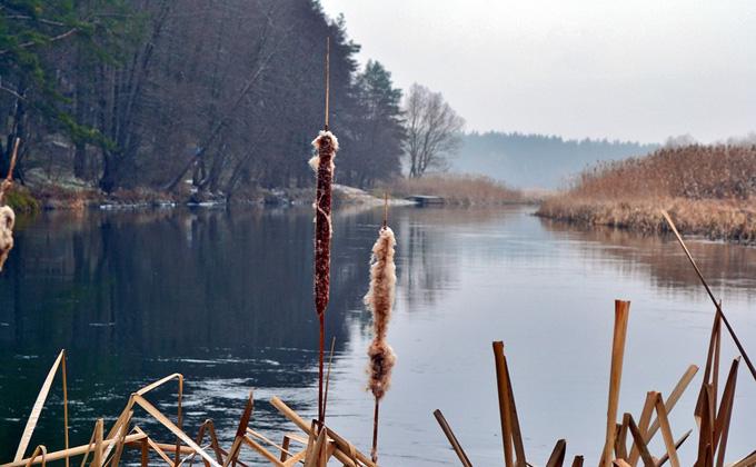 Утопил в реке знакомого житель Сузуна