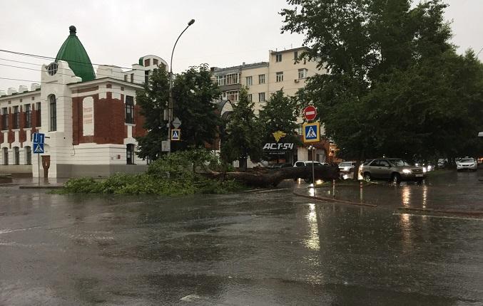Буря и ливень натворили дел в Новосибирске