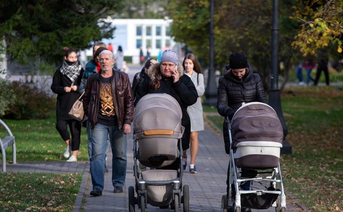 15,5 млрд рублей социальных выплат получат жители области в 2019 году