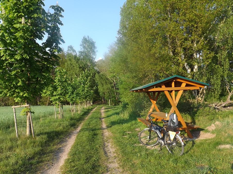Вооружен и на велосипеде: престарелый любитель спиртного пытался ограбить дачниц