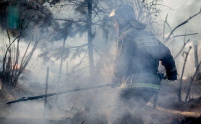 ВМошковском районе Новосибирской области пожарные спасли отогня около 500 дач