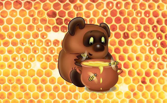 Как отличить натуральный мед от «неправильного»