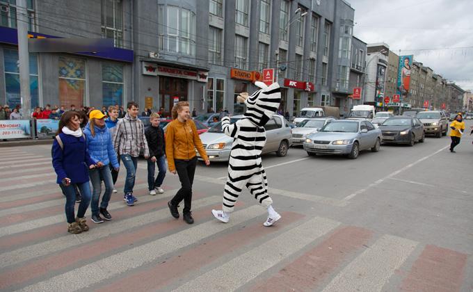 «Зебры» появятся в городе к Дню Победы