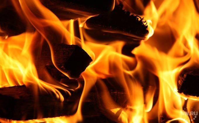 Новосибирское МЧС будет искать поджигателей травы при помощи беспилотников