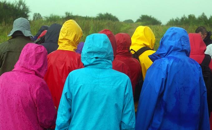 Буря разыграется вНовосибирске, предупреждают cотрудники экстренных служб