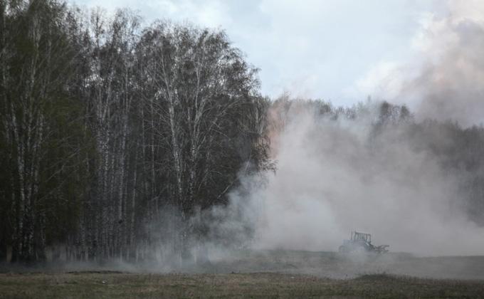 Эколог: полвека надо на восстановление Красноярских лесов