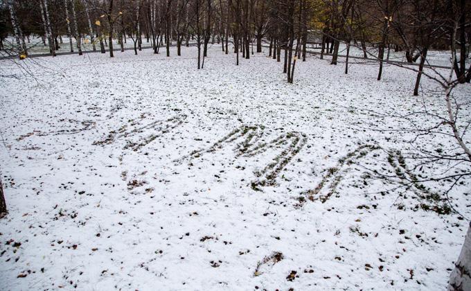 Погода 2-4 ноября в Новосибирске: снег уже не растает