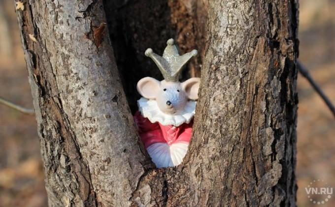 Омич забрал «закладку» снаркотиками, спрятанную вдупле дерева