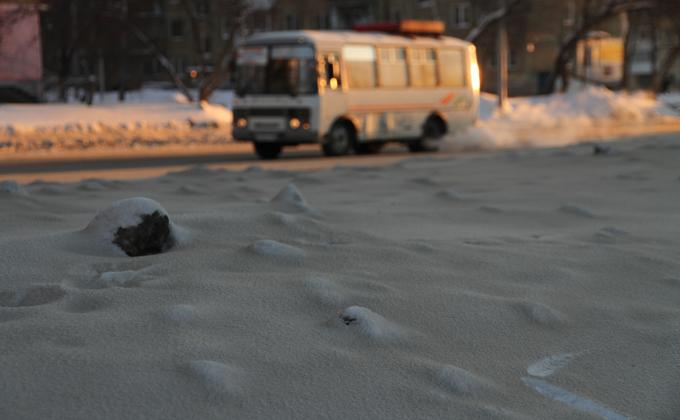 Запыленность Новосибирска в 100 раз превысила норму