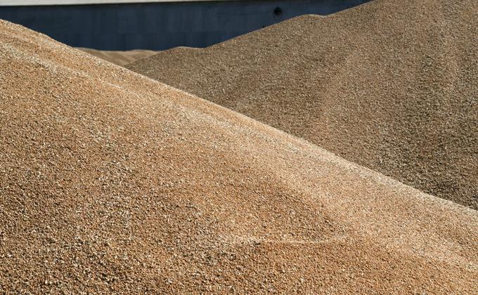 ВНовосибирске власти обсудили катастрофу сурожаем зерна